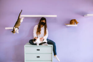 Hero image: kitty jumping off the floating shelf